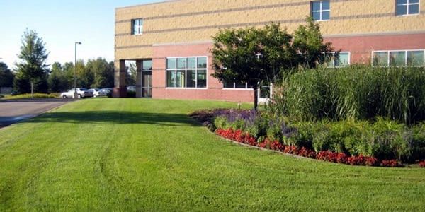 landscaping company suffolk county