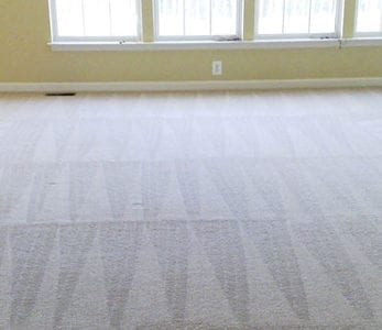 suffolk county residential carpet cleaning